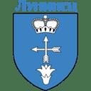Лого СДЮШОР | Лунинец