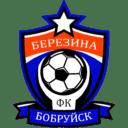 Лого ФК Березина | Бобруйск